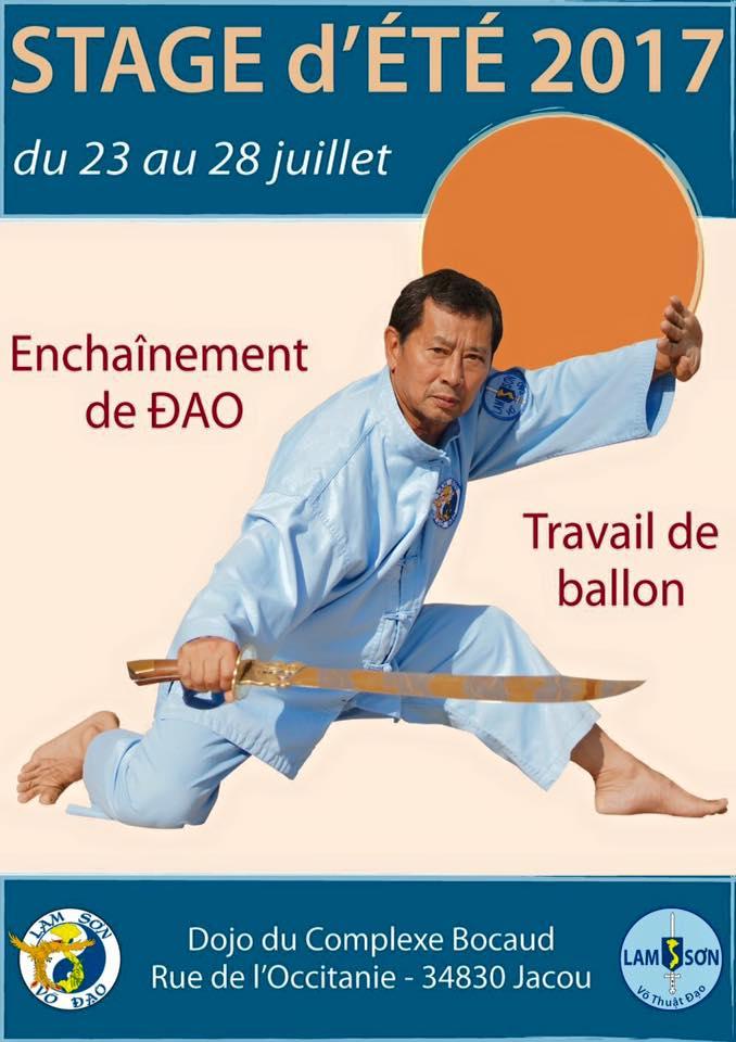 Le stage d'été avec Maître Jacques Tran Van Ba | Jacou