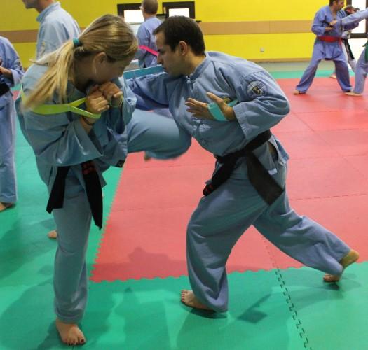 """Stage """"Techniques de combat traditionnel"""" du 30 novembre et 1er décembre 2013"""